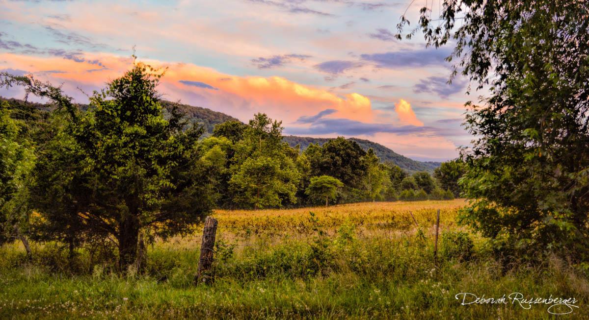 Hazel Valley Sunset-