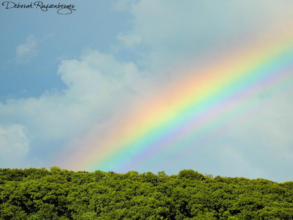 Rainbow on Brannon Mountain