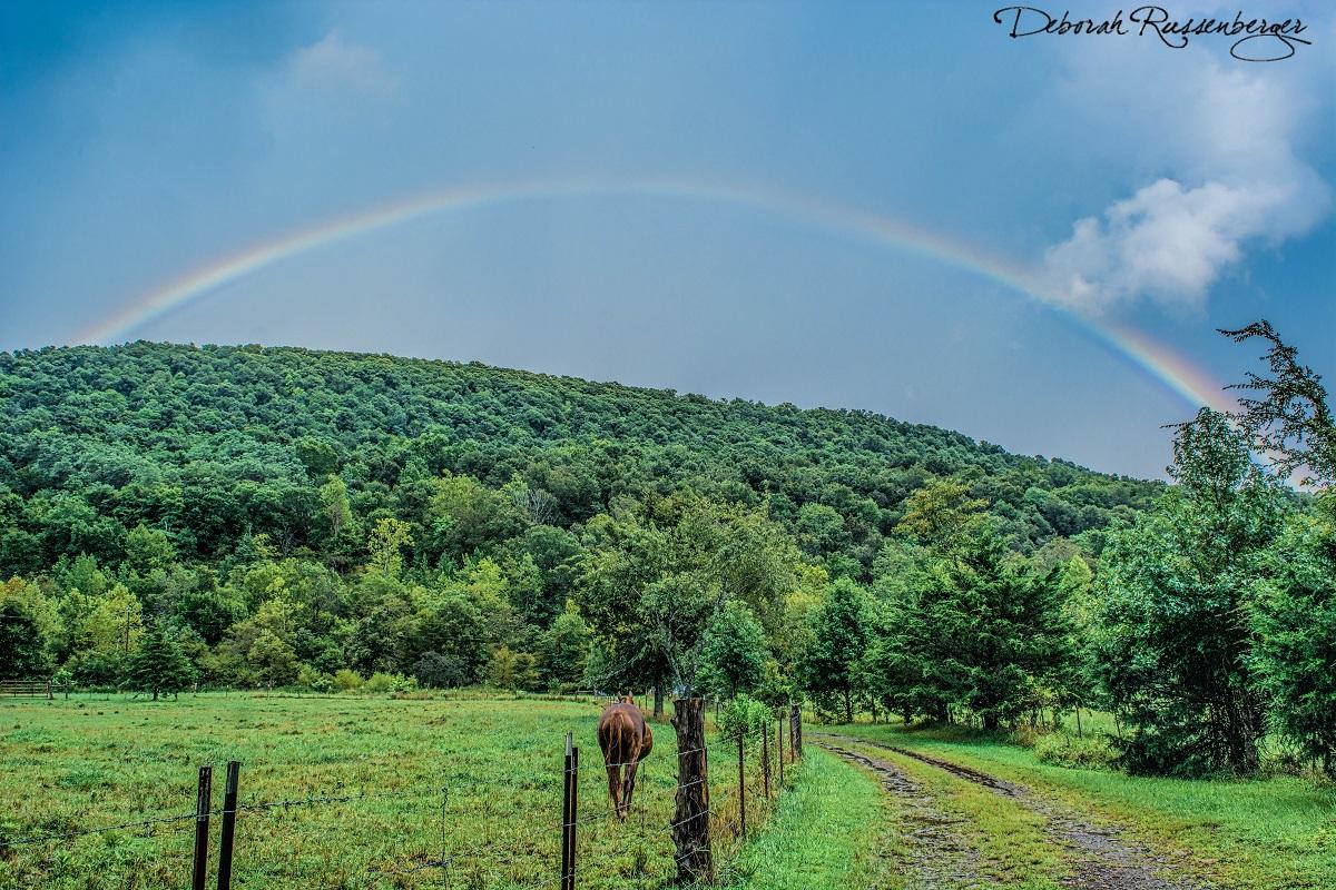 Rainbow over Brannon Mountain